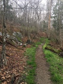 Hiking trail of the BRP